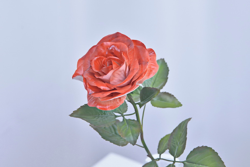 Porcelain rose, ceramic