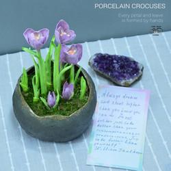 Porcelain crocus flowers