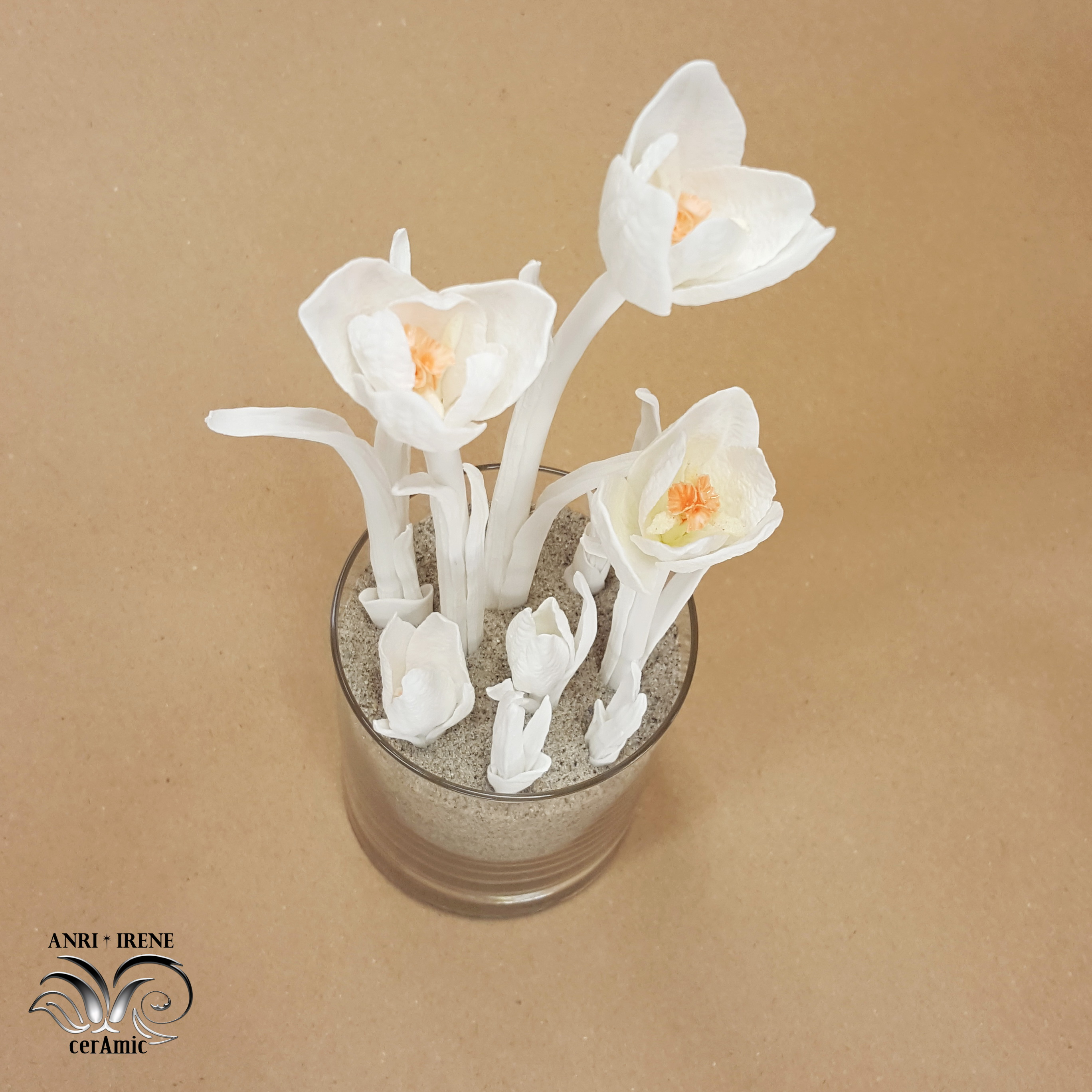 Porcelain crocus