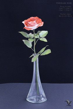 Porcelain rose New fashion