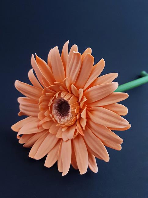 Ceramic gerbera daisy