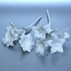 Porcelain ceramic campanulas
