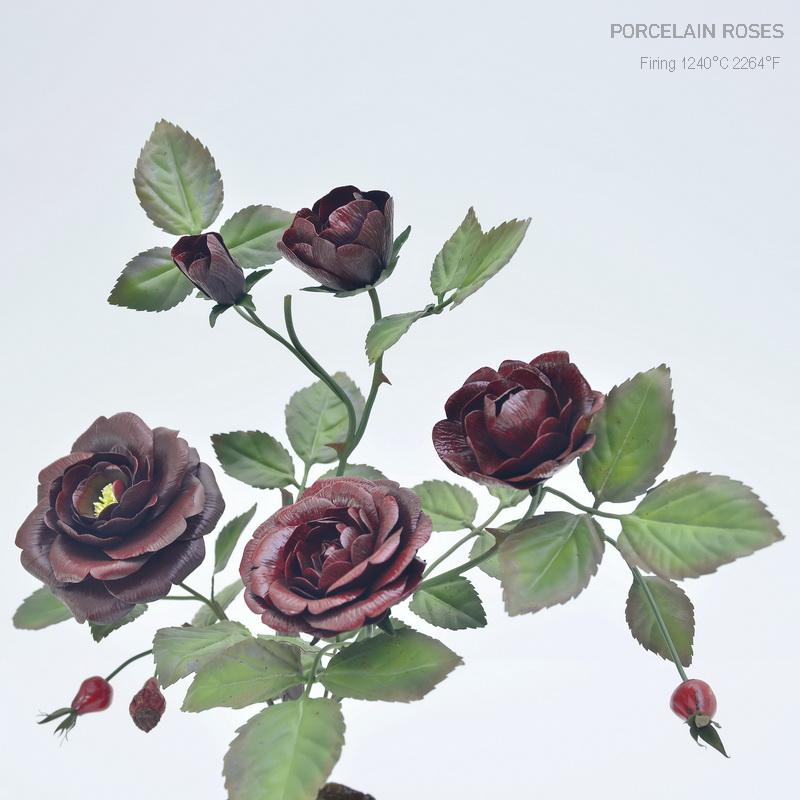 Black burgundy roses