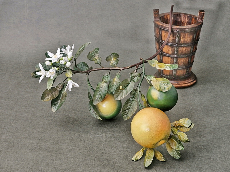 Porcelain grapefruit branch