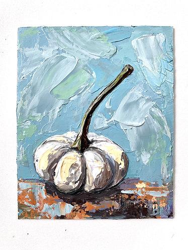 White Pumpkin Study