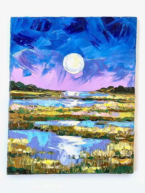 Moonlit Marsh