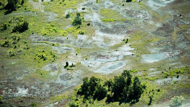 Aerial_3 (kopia).jpg
