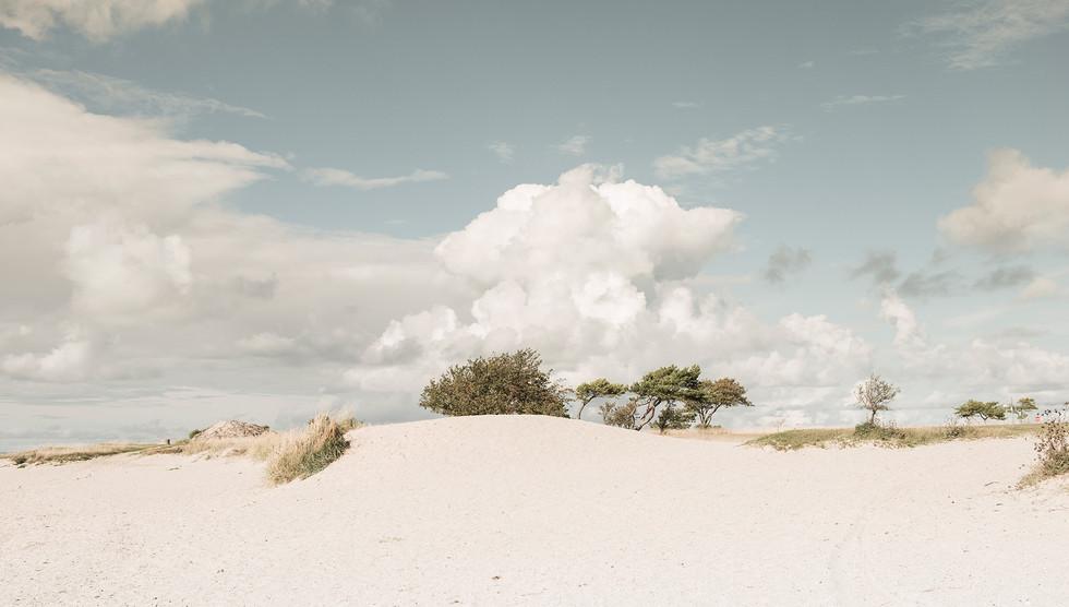 Beach Gotland