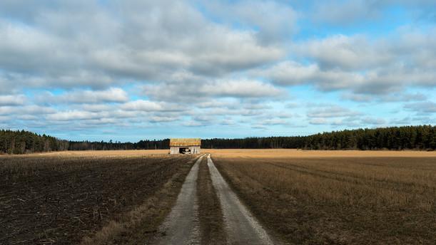 Landscapes_1 (kopia).jpg