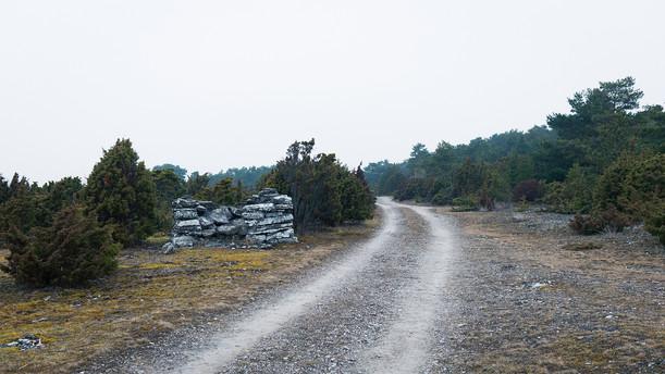 Landscapes_13 (kopia).jpg