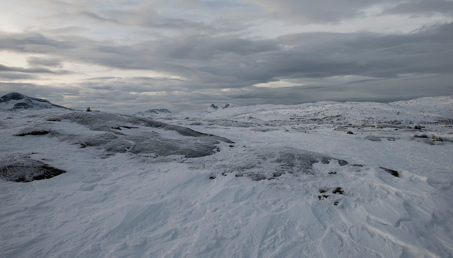 Swedish landscape north