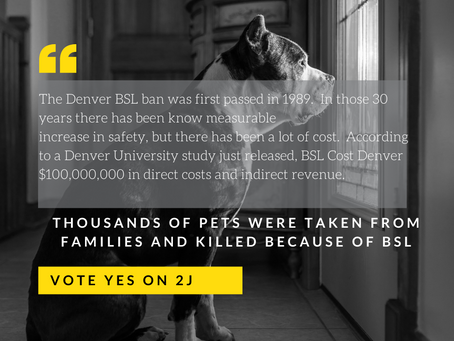 Hey Denver, Vote YES on 2J!