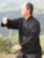 yang tai chi cover