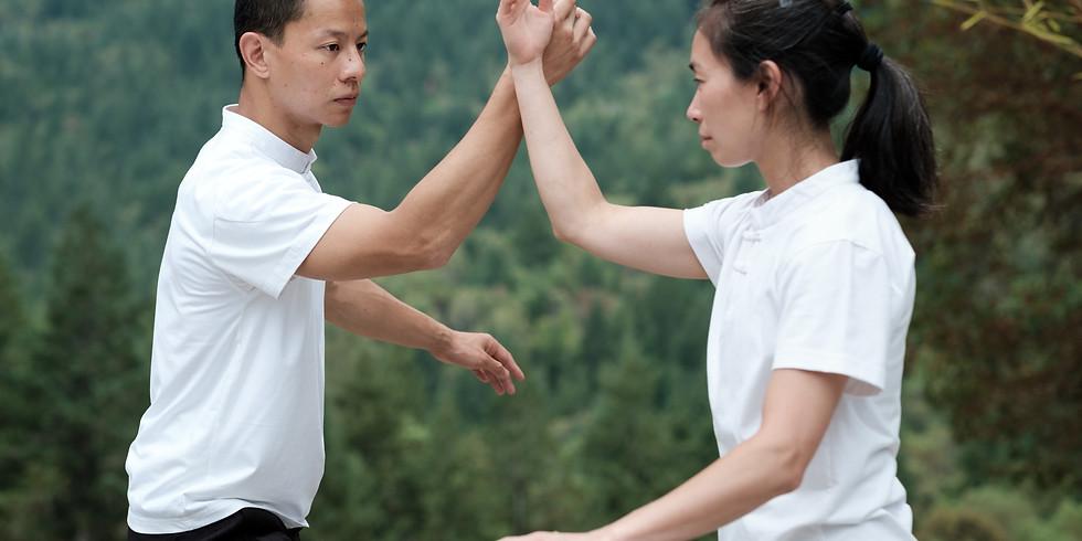 Taiji Pushing Hands Workshop