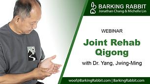 Joint Rehabilitation Qigong