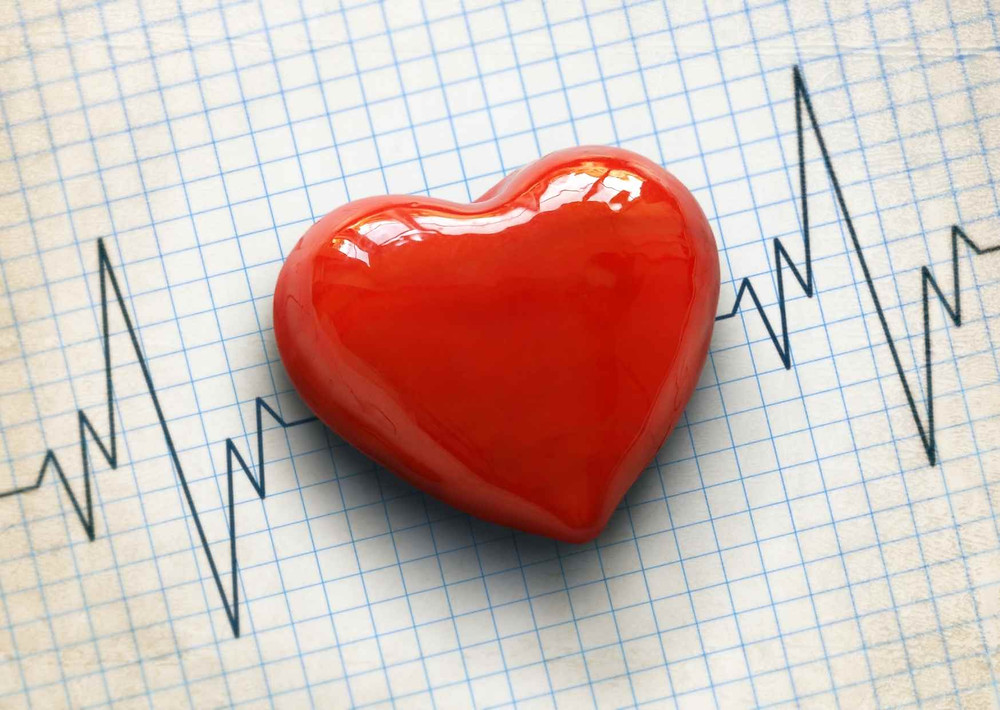 Phenolic-rich EVOOs effectively reduce the risk of cardiovascular diseases. Find out what science says about it.