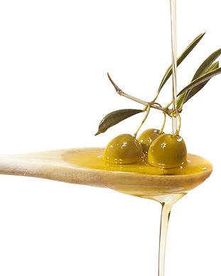 Olive oil jet over a olive branch in a w