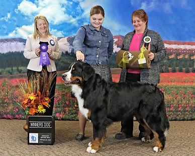 Winners Dog.jpg