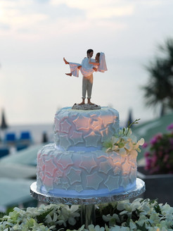 Couple bring their own cake topper.jpg