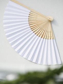 Hand fan (white).jpg
