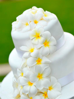 cake 2 tiers.JPG