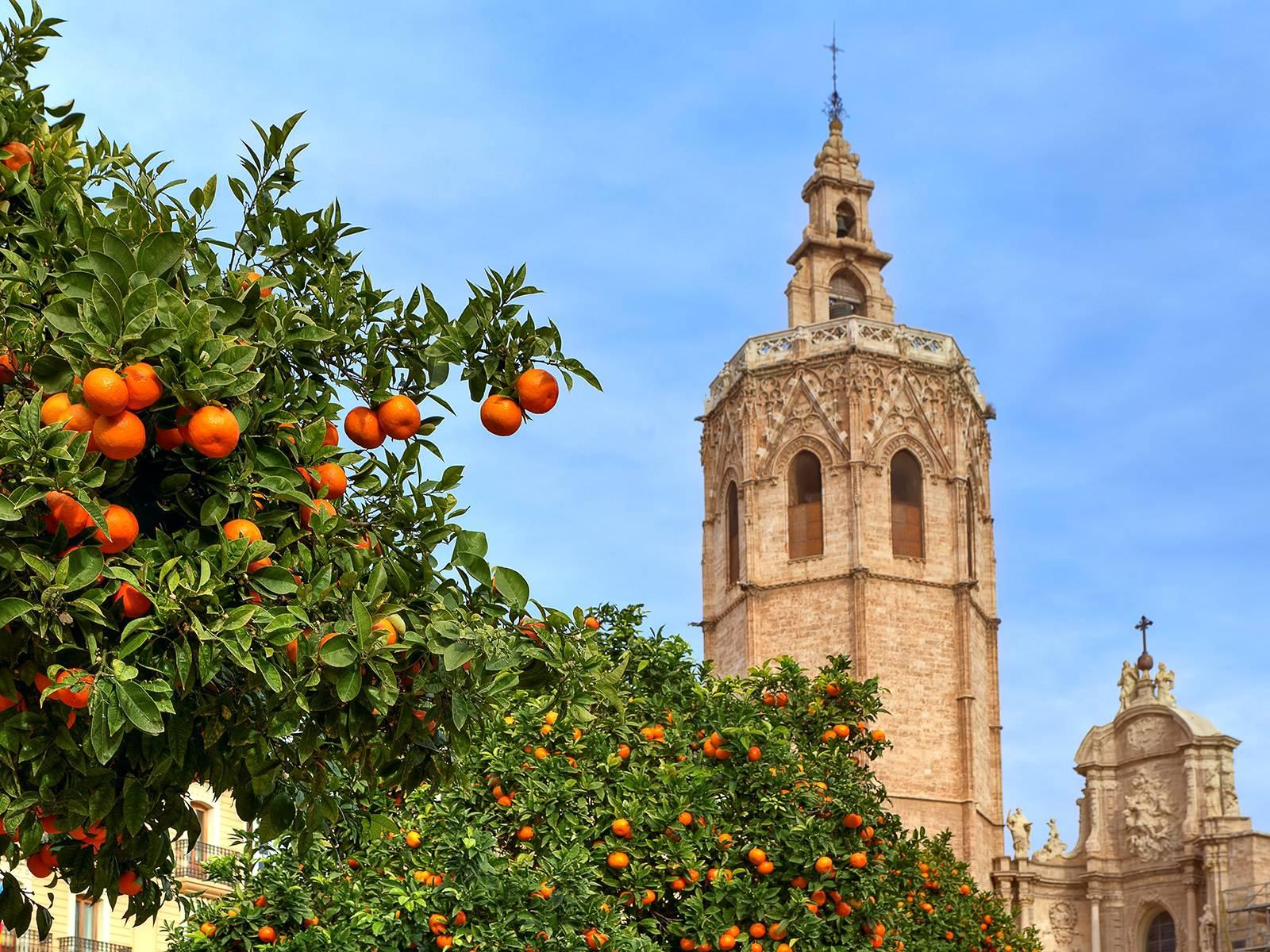catedral_valencia_0