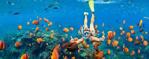 large-snorkeling-UNAWATUNA.jpg