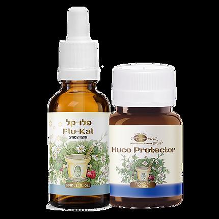 natural medicine for colds