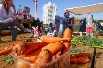 ירקות אורגניים | פירות אורגניים | הוד השרון