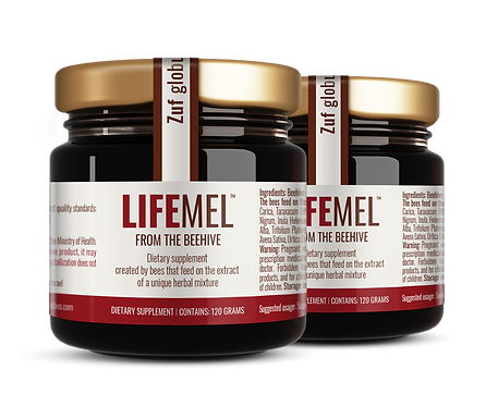 2 Pack LIFEMEL   CHEMO and RADIATION SIDE EFFECTS SUPPORT HONEY   2X120 ml