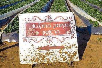 הקיוסק החקלאי בהוד השרון