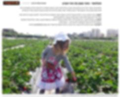 תותלאנד בתקשורת | מבית תותי משק טל