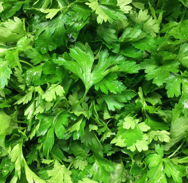 parsley .png