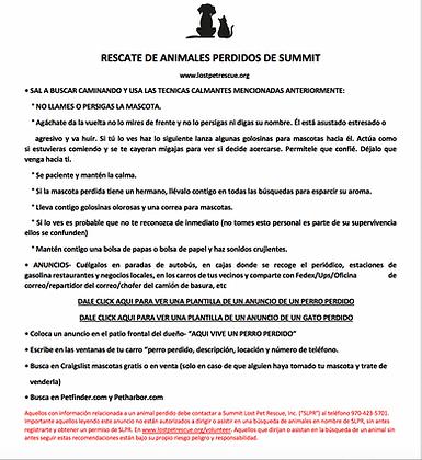 Protocols #2 Spanish.png