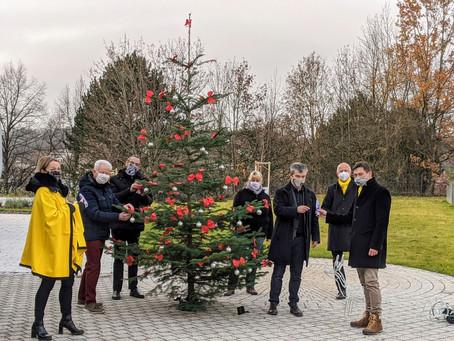 Ein Weihnachtsbaum 🎄 für den Caritas-Hospiz Lebensraum