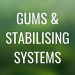 L2 - GUMS AND STABILISING SYSTEMS.jpg