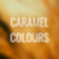 L2 - CARAMEL COLOURS.jpg