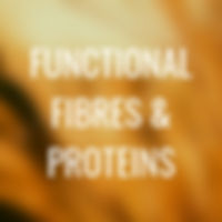 L2 - functional fibres and protein.jpg