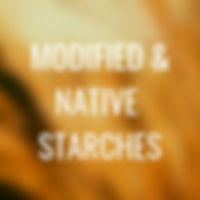 L2 - MODIFIED AND NATIVE STARCHES.jpg