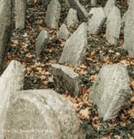 cemetery in prague