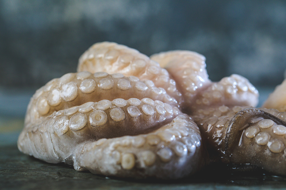 Octopus dinner ideas