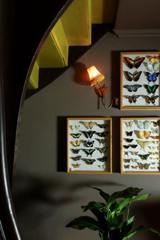 Sommerfuglvegg under trapp