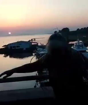 video-1527393859.mp4