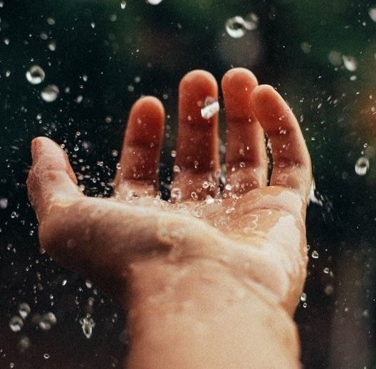 El Chamán del Agua