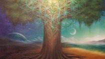 Co-crear la Nueva Tierra