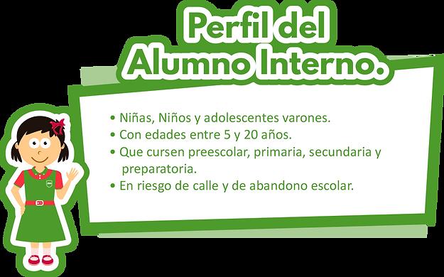 FJMA_Web_Contenido_PE_Internado_07.png