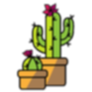 Cactus_0220_edited.png