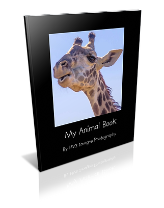 Children's Animal Book by HV3 Images