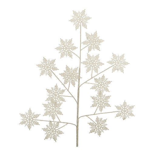 Sneeuwvlok tak