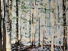 Hoag Pale Summer Woods 30x40 $3600.jpg